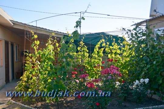 chastnyj-dom-otdykha-khata-u-ivana-kurort-lebedevka-003.jpg
