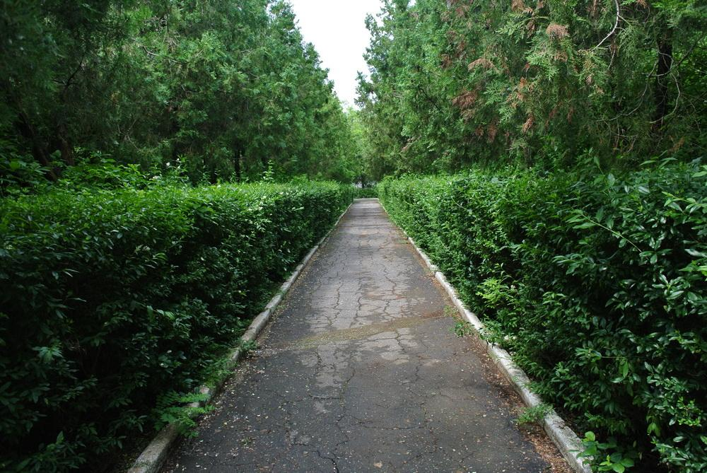 База отдыха Ривьера на курорте Лебедевка 2016 год   4578
