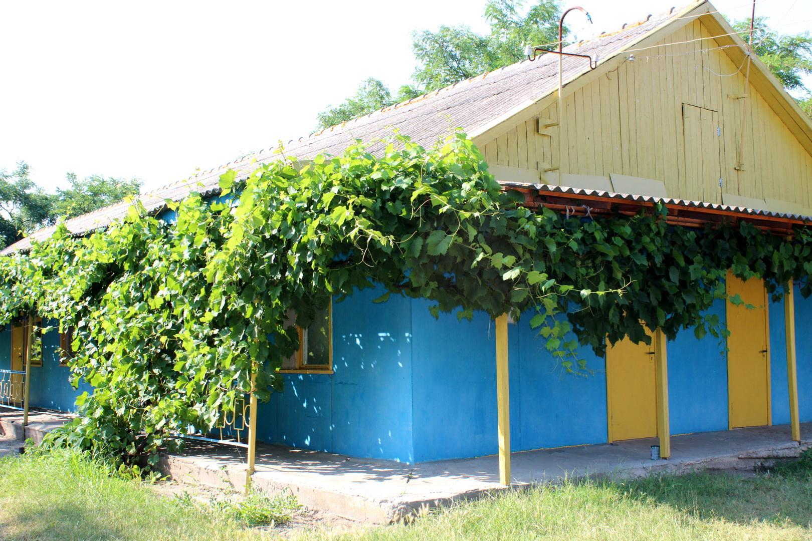 Территория базы отдыха «Лагуна»